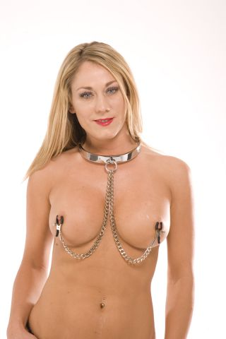 Stainless Steel Collar w/Nipple Clamps